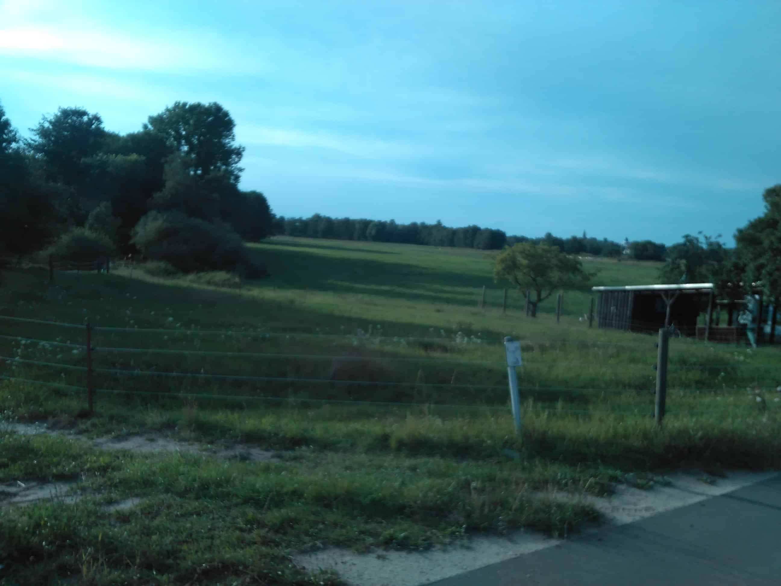 Landwirtschaftl. Grünfläche, die bei Realisierung der maximalen Ausbauvariante mit einer Straßenbrücke überbaut werden würde