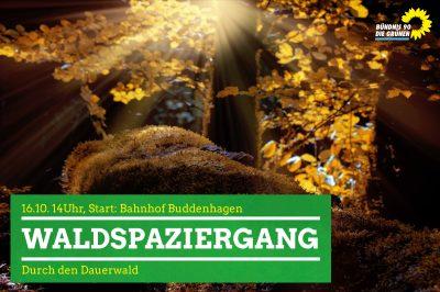 Dauerwald
