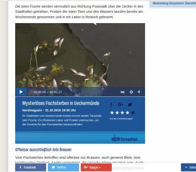 Fischsterben in der Uecker