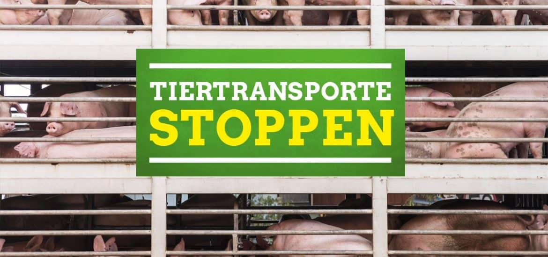 Forderung Tiertransporte stoppen